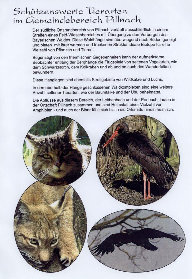 Schützenswerte tiere