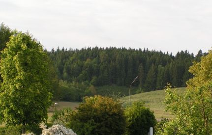 Der Eichelberg bevor die Siedlung entstand